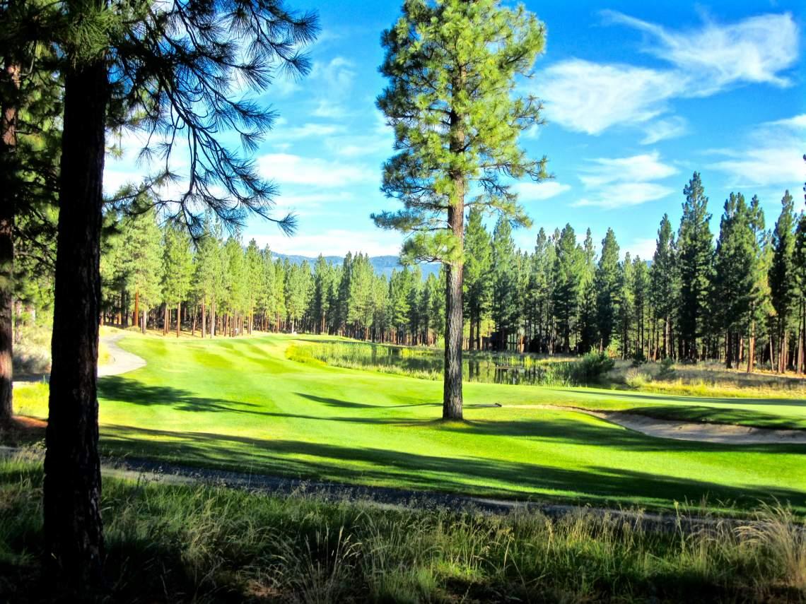 Dragon-golf-course