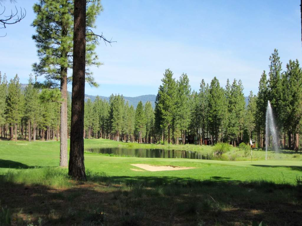 Dragon-golf-course-view