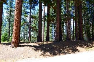 19 Moccasin Trail, Graeagle