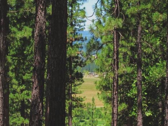 266-boulder-drive-views