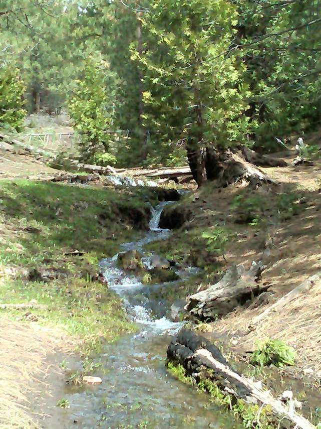 Int-Stream-on-prop-late-spring-20110507-00002