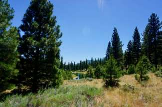 328 Blacktail Ridge, GRIZZLY RANCH