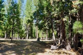 34 Tolowa Trail