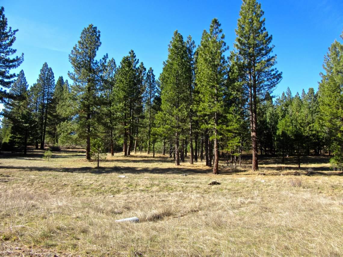 348 Smith Creek Ranch - 2145