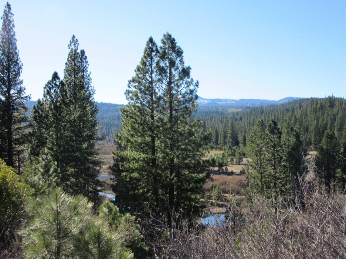 Smith Creek Ranch - pond views