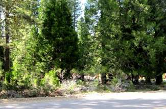 43 Wishram Trail, Graeagle