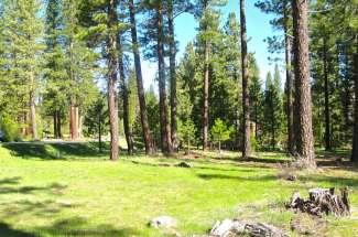 56 Poplar Valley Road, Plumas Pines