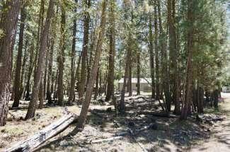 6 Nozi Trail, GRAEAGLE