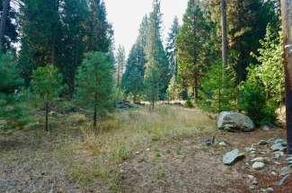 80 Paiute Trail, Graeagle