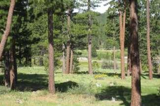 963 Smith Lake Road, Smith Creek Ranch
