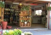 garden-shoop-office