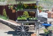 garden-shop-cart-out-front