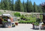 garden-shop-entrance